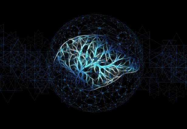 psicologo bari intelligenza
